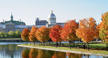/uploadedImages/Destinations/International_Focus/Bonsecours_market.jpg