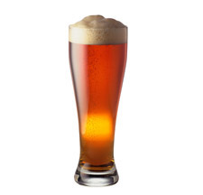 Tall glass of beer