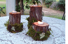 Redwood and moss tea-light holders