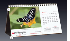 Calendar, promotion, meeting, event, convention