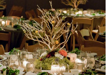 All-natural centerpiece