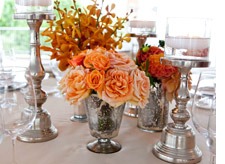 Peach-colored roses in a vase