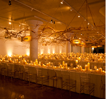 Ballroom decorated with branches