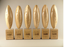 Wooden awards by janet helm