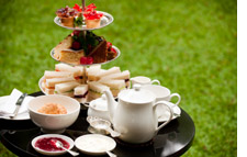 Afternoon tea service