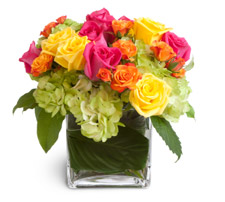 flowers in a square vase