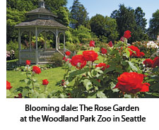 The Rose Garden at the Woodland Park Zoo