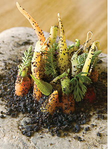 Nordic cuisine from Noma